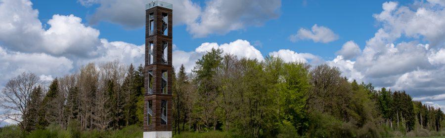 Blick zum Bannwaldturm