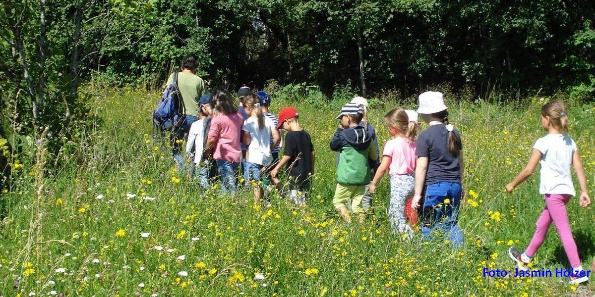 Kinder auf Führung Wiese im Pfrunger-Burgweiler Ried