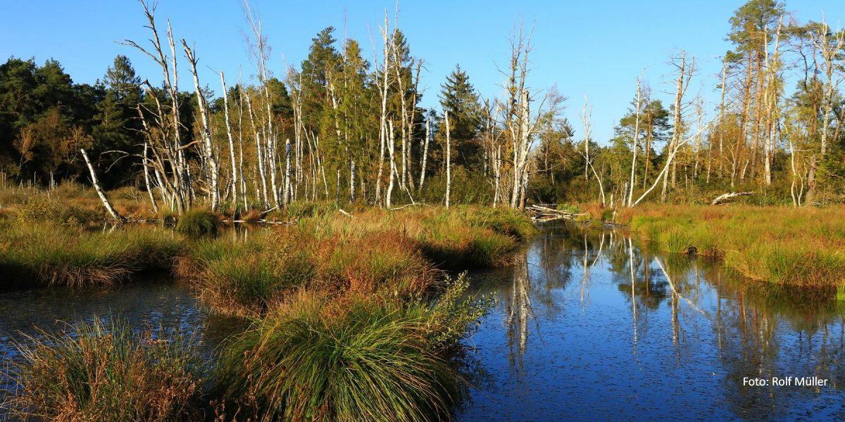 Herbst im Schnöden