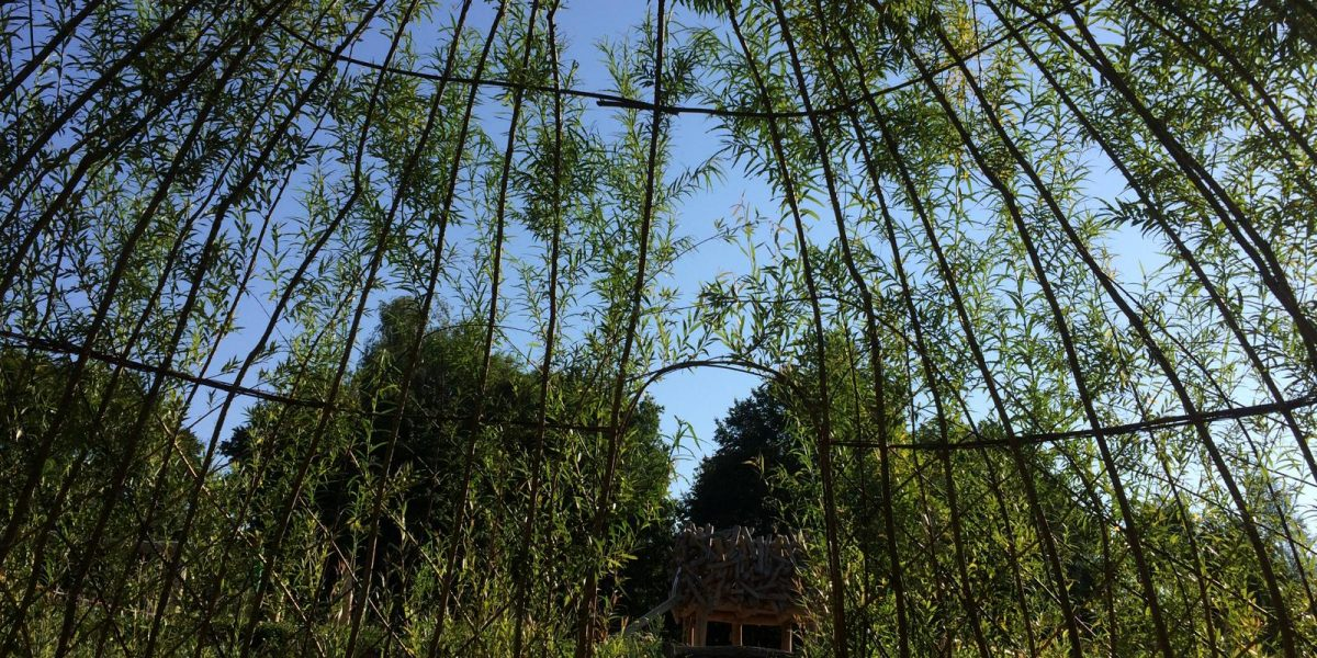 Naturparcours grüne Weiden