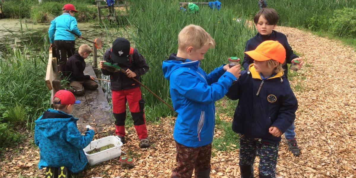 Kinder beim keschern im Naturschutzzentrum Wilhelmsdorf