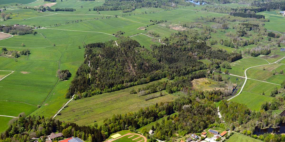 Naturschutzgebiet Pfrunger-Burgweiler Ried